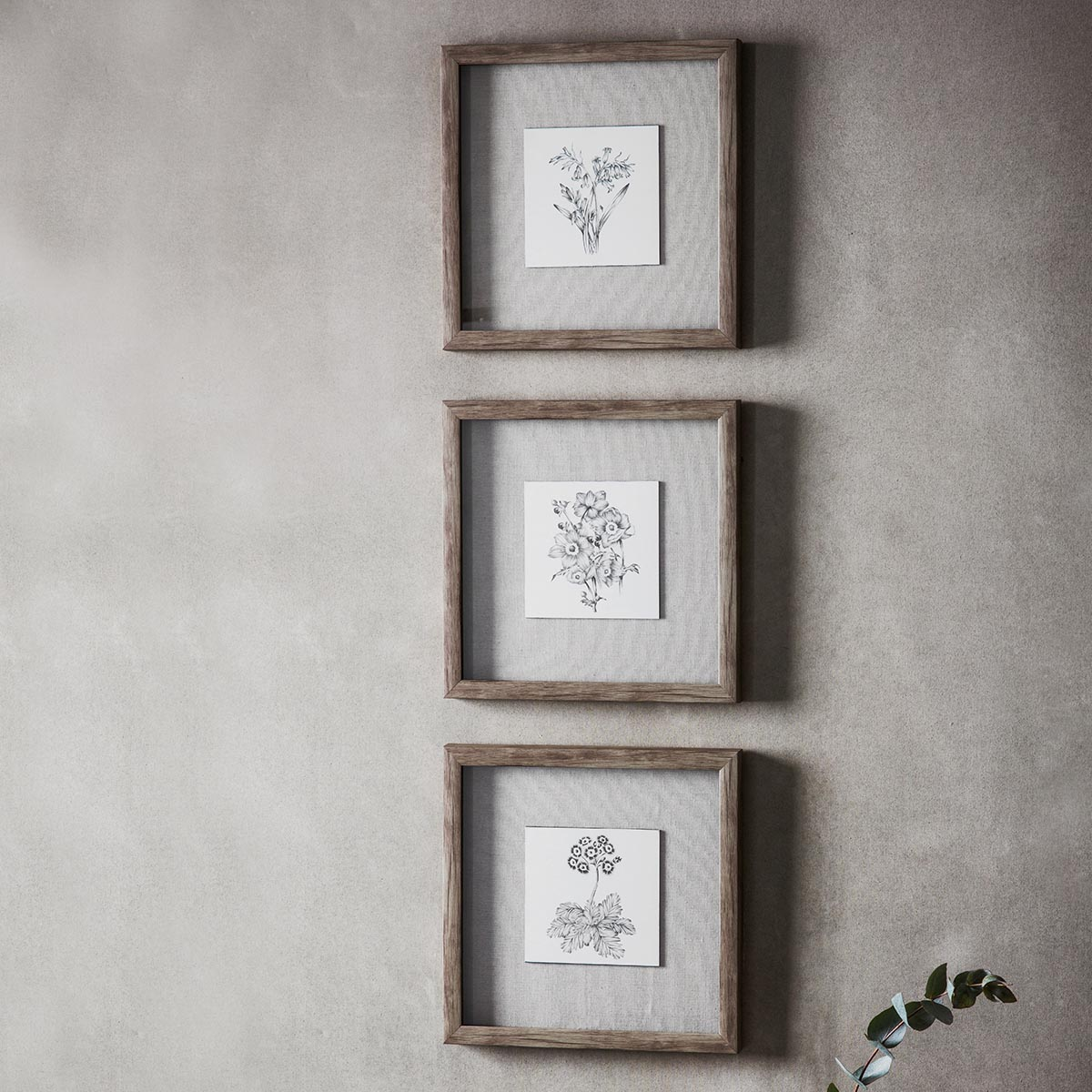 Monochrome Botanical Framed Art Trio 305x305mm - The House in Town