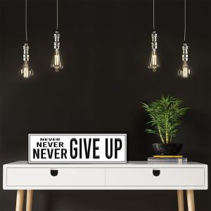 ES-NEVER-NEVER-NEVER-GIVE-UP-1